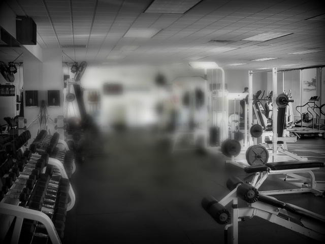 image for The GYM